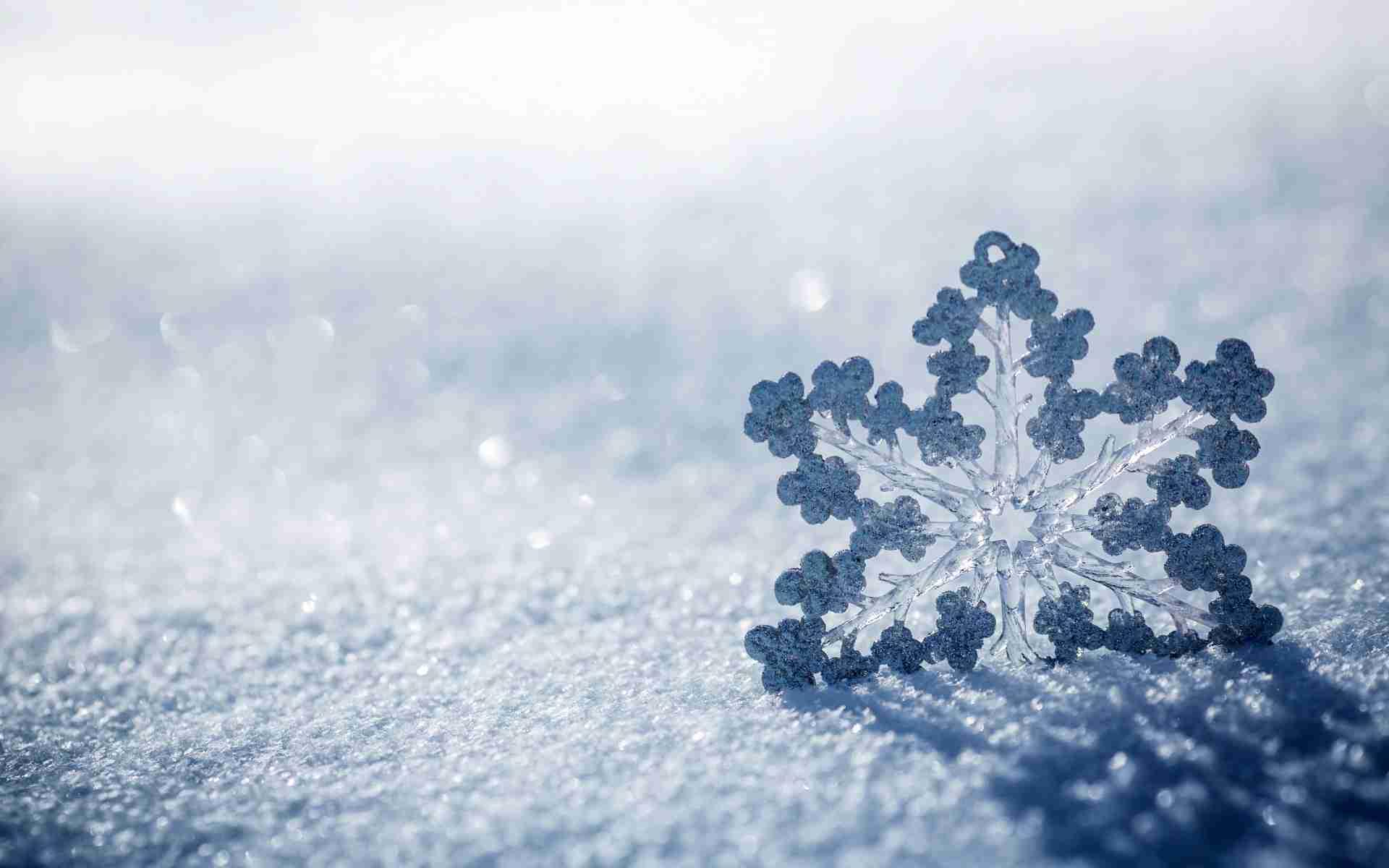 Resultado de imagem para neve